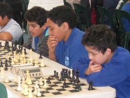 Chess team makes State finals
